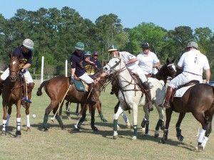 equestrian-polo
